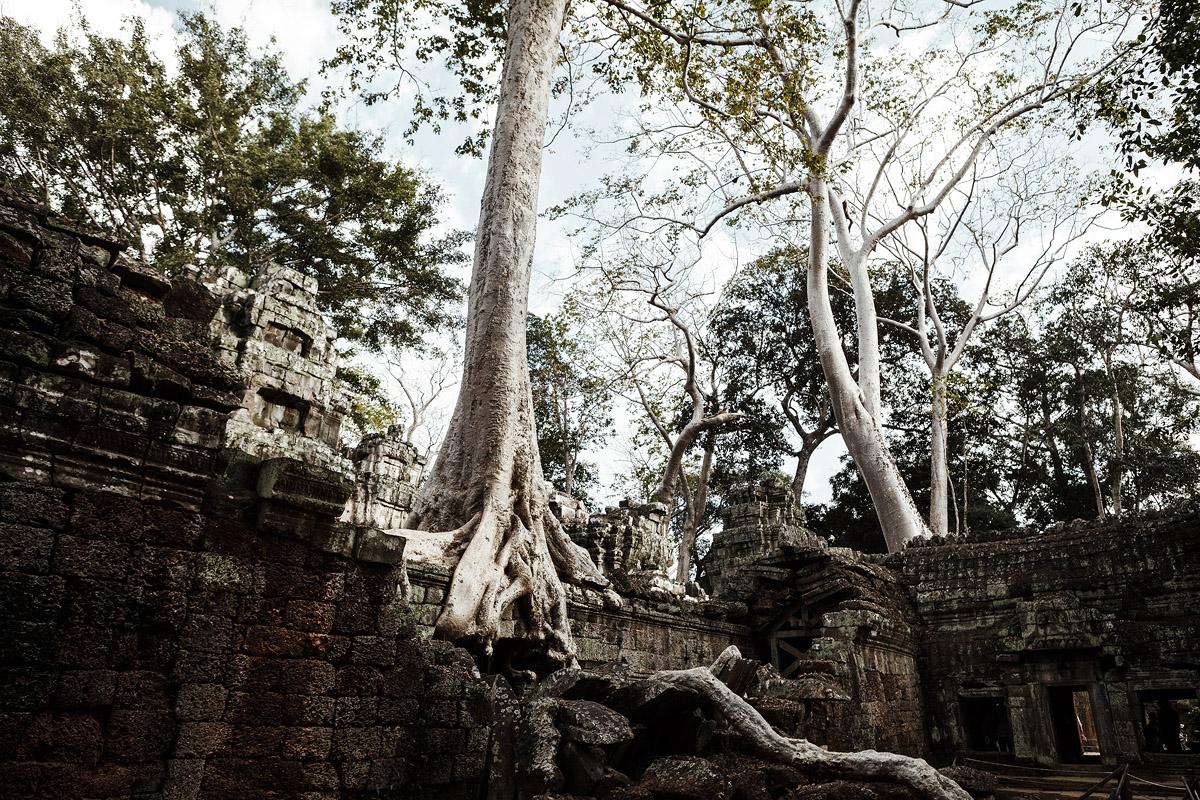 Asien <span>|</span> Siam Riep & Angkor